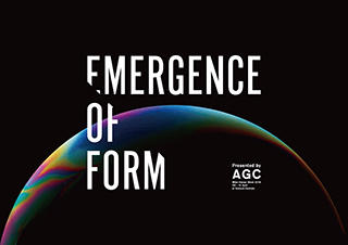 Emergence of Form
